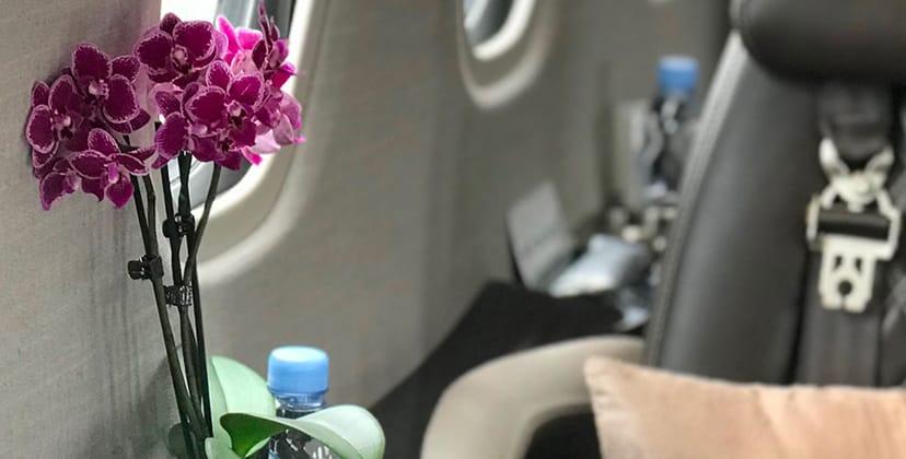 Flowers service - FBO Paris Le Bourget